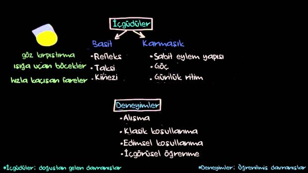 Operant Conditioning-Edimsel Koşullanma